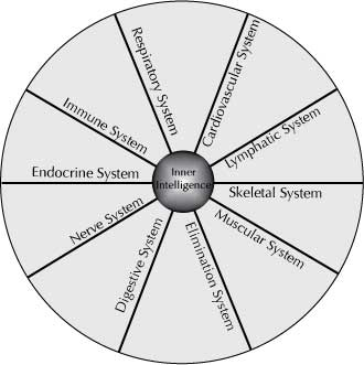philosophy_SystemsWheel